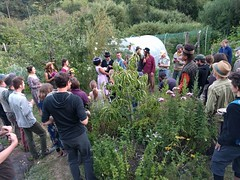 Wedding in the Garden (Heath & the B.L.T. boys) Tags: wedding permaculture farm garden