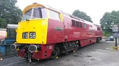 D1015 at Kidderminster (Decibel Dave) Tags: severnvalleyrailway kidderminster diesellocomotive d1015 western dieselhydraulic class52 maybach