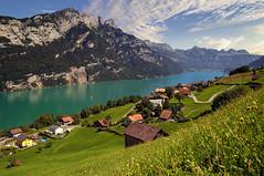 Summer feeling...EXPLORE (Alex Switzerland) Tags: landscape summer sommer estate paesaggio landschaft glarus walensee innerschweiz canon eos 6d switzerland schweiz