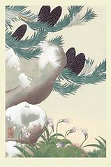 Veitch's silver fir and butterwort (Japanese Flower and Bird Art) Tags: flower veitchs silver fir abies veitchii pinaceae butterwort pinguicula vulgaris lentibulariaceae masaharu inoue nihonga woodblock print japan japanese art readercollection