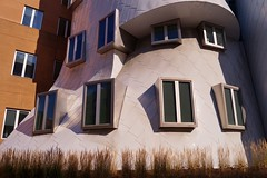 Cambridge - MIT - Ray and Maria Stata Center 11 (luco*) Tags: usa united states america tatsunis damrique amrique nouvelle angleterre new england boston massachusetts cambridge mit ray maria stata center frank gehry