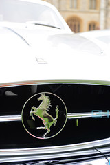 Ferrari 250 GT Europa Pinin Farina Speciale 1955 Windsor Castle Concours of Elegance 2016GH6_0826 (Gary Harman) Tags: ferrari 250 gt europa pinin farina speciale 1955 windsor castle concours elegance 2016 cars racing art gary harman garyharman gh gh4 gh5 gh6