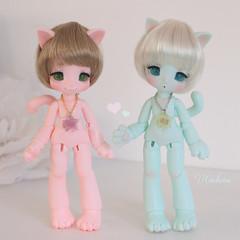 Love  (cachoou) Tags: kinokojuice nia hain doll bjd cat love mint pink