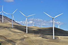 Eternal Power (RichSeattle) Tags: richseattle nikon d750 washington washingtonstate windmill windmills power giant electricity hill grass sky clouds powergeneration greenpower green white