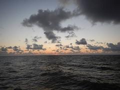 Photo (the61stpier) Tags: pier fishing galveston texas tx dock 61stpier