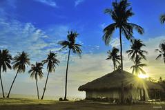 Jesus is light (pickled_newt) Tags: sunset beach island afternoon philippines cebu scubadiving visayas cebuano malapascuaisland threshersharks monadshoal cogonhut