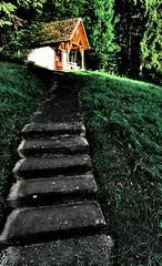 weg zur waldkapelle (lichtfinger) Tags: morning light forest landscape deutschland licht pentax treppe grn landschaft wald morgen baum kapelle