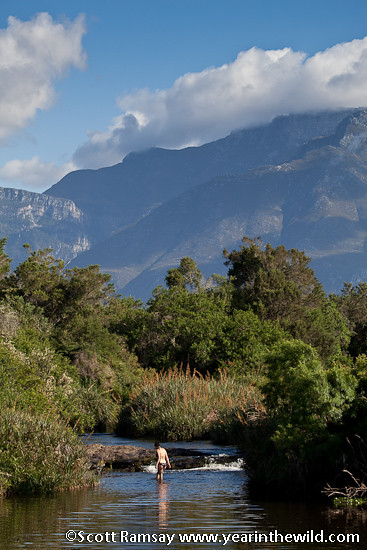 Bontebok National Park - South Africa
