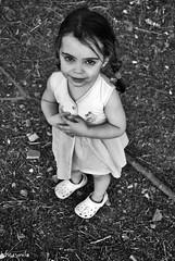 Adriana (Cristina Jiménez Ledesma) Tags: blue trees verde green smile field yellow azul hair model eyes árboles sitting village dress wind rustic pueblo viento modelo redhead amarillo ojos campo sonrisa sparrows fatima pelirroja smalltown vestido pelo fátima sesión gorriones rústico pueblerina