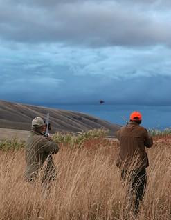Oregon Luxury Upland Hunting 13