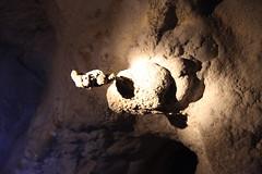 IMG_0506 (damn traveller) Tags: sarawak malaysia cave mulu