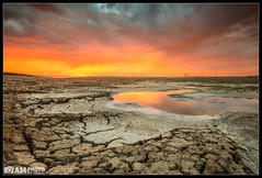 Drought's Bane [Explored] (Aaron M Photo) Tags: sunset sky sun lake color reflection nature water beautiful northerncalifornia clouds landscape dead photography death bay pond nikon pretty mud stuck crane wildlife explosion scenic sanjose dry crack textures lakebed valley monsoon swamp bayarea land blocks siliconvalley dried cracks silicon reds westcoast muddy extinct pinks sfbay refuge draught driedup siliconvalleyphotography aaronmeyersphotography texturessmell