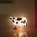 The night light cow at Metro Hotel