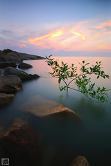 Pantai Minyak Beku season 5 (Shahrulnizam KS) Tags: uk sunset cloud sun seascape tree beach nature water rock japan america sunrise landscape boat blackwhite nikon europe slow unitedstates earth jetty australia nikond70s malaysia slowshutter shutter infrared hitech johor puchong terengganu batupahat selangor lansdscape johorbahru nd400 sigma1020 fullir impressedbeauty nikkor18105 blinkagain