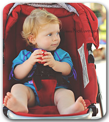 DSC_5426-WEB (Mick_Luvin) Tags: sitting sweet adorable babygirl babytoes redball redhair seatbelt cutetoddler lookingsideways strappedin instroller bluebathingsuit holdingball redstroller abouttothrow clutchingball