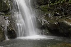Cascate del Dardagna (tullio dainese) Tags: nature outdoor natura allaperto