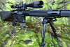 "AR 15 • <a style=""font-size:0.8em;"" href=""https://www.flickr.com/photos/37858602@N07/8030105330/"" target=""_blank"">View on Flickr</a>"