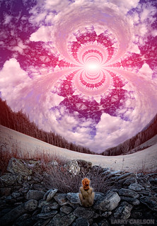 LARRY CARLSON, Skryer, digital photography, 2012.