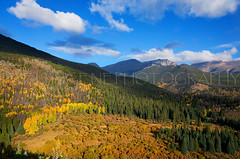 Rocky Mountain National Park Fall Light (wellscenephotography (ON)) Tags: park blue trees light sky mountain color fall colors clouds landscape photography colorado shadows angle wide rocky vivid national valley aspen 2012