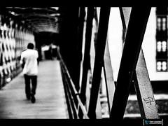 Pont Eiffel to Gerona (tolombardo) Tags: blackandwhite bw white black walk eiffel girona pont viaggio spagna gerona reportage ferro catalogna