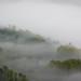 """Vallée de la Loue depuis le belvédère du moine v2 recadrée • <a style=""""font-size:0.8em;"""" href=""""http://www.flickr.com/photos/53131727@N04/8050068053/"""" target=""""_blank"""">View on Flickr</a>"""