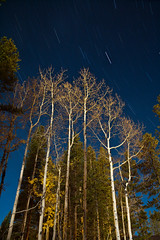 Breckenridge star trails (Kevin Bauman) Tags: longexposure trees sky fall night stars nighttime aspens startrails