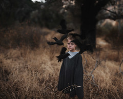 The keeper's kin. (David Talley) Tags: blue motion cold tree fall halloween field forest dark flying sweater kid oak eyes woods october warm child allen evil son creepy edgar crow poison raven bushes poe kin clemm