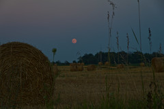 Hay Moon Rising (ramseybuckeye) Tags: life county ohio moon art field night corn pentax farm wheat straw full hay buck bales wheatfield auglaize