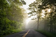 Parkway Morning (y0chang) Tags: yunghanchang blueridgeparkway road pentax landscape virginia fog k5