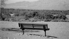 Sit & Watch The Desert Grow (Shot by Newman) Tags: parkbench mojavedesert sand stones view shotbynewman bw mountains rockformations ilford park southwestus 35mm daylight ilforddelta400