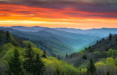 Great Smoky Mountains National Park Gatlinburg TN Scenic Landscape (Dave Allen Photography) Tags: greatsmokymountains tn gatlinburg cherokee sunrise scenic landscape smokies nationalpark outdoorphotographer appalachians northcarolina tennessee spring daveallen gsmnp valley oconaluftee nc outdoor nature sunset mountains appalachia southernappalachians wnc