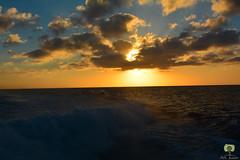 Coucher de soleil hypnotisant (Ath Salem) Tags: algrie croisire mer maritime entmv transport cherchell pcherie tipaza la madrague ain benian mditerrane tourisme dcouverte dtente ischiamar indit coucher de soleil magnifique lumire nuage tombeau chrtienne maurtanie mausole nuit aurassi bateau navire boat sea sunset awesome port                    notredame dafrique