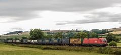 3249_2016_07_16_Haunetal_Neukirchen_BB_1116_275_TAURUS_mit_LKW_Walter_KV_Bad_Hersfeld (ruhrpott.sprinter) Tags: ruhrpott sprinter deutschland germany nrw ruhrgebiet gelsenkirchen lokomotive locomotives eisenbahn railroad zug train rail reisezug passenger gter cargo freight fret diesel ellok hessen haunetal boxxboxxpress db egp ell hhla hsl hvle lbllocon metrans mrcedispolokdispo bb railpoolrpool rbh rhc schweerbau sbbc txltxlogistik wienerlokalbahnencargo 143 145 152 182 185 193 218 270 428 650 1264 1266 421 es64u2 es64f4 greencargo ice r5 outdoor logo natur sonnenaufgang graffiti rinder