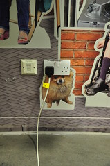 dog lead (Berny Mc) Tags: indoors dog posters parr