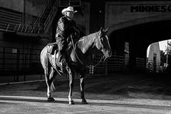 Whoa is me (TwinCitiesSeen) Tags: blackandwhite horse people fair statefair minnesota minnesotastatefair saintpaul twincities twincitiesseen canont3i tamron2875mm
