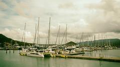 Abell Point Marina (Vickyeastwood) Tags: queensland qld whitsundays whitsundayscoast nikon nikonp900 p900 nikoncoolpix coastline sea ocean airliebeach abellpointmarina marina boats yacht sailing catamaran