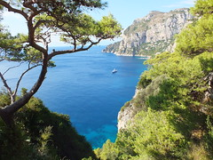 High coast (E Pulejo) Tags: blue trees sea water island capri coast high view climbing