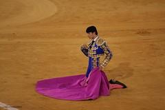 puerta gayola (Cani Mancebo) Tags: españa spain arena murcia capote matador torero derodillas puertagayola antoniopuerta canimancebo plazadetorosdelacondomina