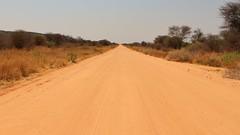 long and winding road (ellesmere FNC) Tags: africa landscape lion adventure safari zebra giraffe elephants vulture wilderness namibia etosha dik springbok warthog ellesmerefnc