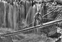 Salmon Netting (h_roach) Tags: canada horizontal waterfall dangerous fishing terrace britishcolumbia working salmon balckandwhite firstnations netting skeenariver