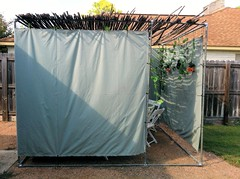 DIY Succah Structure