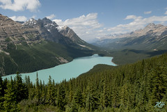 Looking North (KGHofSF) Tags: trees lake mountains nature landscape photography photo nationalpark rocks valley parkway vista banff rockymountains icefields peytolake peyto icefieldsparkway kghofsf 2012roadtrip