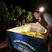 2012 Cal Plans Woods Chardonnay Harvest 0022
