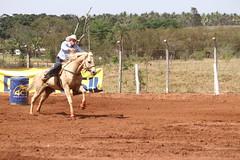 IMG_78893 (Max Hendel) Tags: horse max brasil riding cavalo equino agrotcnica equitao hendel equestriansports expotcnica provadostrstambores provados3tambores bymaxhendel tibiribaurusp maxhendel distritodetibiribaurusp esportesequestrres expotcnicaemtibiri expotcnicatibiri proofofthreebarrels proofequestrian