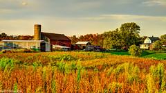 HDR Indiana Farm (Vahleru) Tags: autumn shadow red orange brown tractor green fall home field car yellow farmhouse barn truck cattle farm wheat farming shed indiana rake farmer hdr soybeans stacks