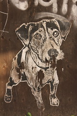 sad doggo (cicatrix) Tags: montreal dog paste graffiti stencil