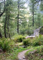 Haute Route - 18 (Claudia C. Graf) Tags: switzerland hauteroute walkershauteroute mountains hiking