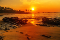 early mornig jogger (Renate Bomm) Tags: 2016 366 beach canoneos6d meer renatebomm sonne sonnenaufgang srilanka wasser golden sky stone water yellow tangalle southernprovince ef24105mmf4l goldengallery amanecer flickrunitedaward asia natura ngc coloursoftheworld beautifulcapture goldenvisions visiongroup thegoldendreams