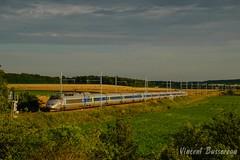 07-07-16 TGV A 383 TGV N8478 Arcachon Pmp (vincent037) Tags: tgv sncf atlantique voyageur les ormes train grande vitesse