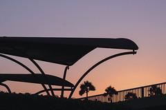 LA sunset (bbandaa) Tags: cali california sunset usa america la los angeles santa monica pier beach silhouette pastel tone pal palm trees park golden hour